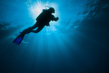 Diver swimming past the sunlight in the Gulf of Mexico Fotografie-Druck von  Stocktrek Images