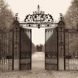 Hampton Gate Photographic Print by Alan Blaustein