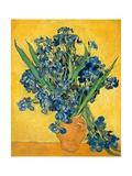 Irises, 1890 Pôsteres por Vincent van Gogh