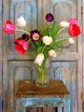 Tulips, Mexico Photographic Print by Alan Klug