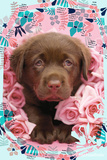 Floral Puppy Poster van Rachael Hale