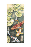 Small Koi Pond II Prints by Chariklia Zarris