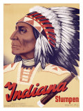 Indiana Stumpen Giclee Print by Johannes Handschin