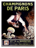 Champignons de Paris Giclee Print