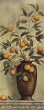 Apricotier Posters by Daphne Brissonnet