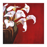 Callas on Red Posters por Ann Parr