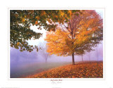 Herbstnebel Poster von Mike Jones