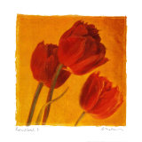 Red and Gold I Prints by Amy Melious