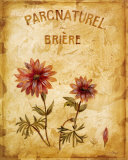 Parcnaturel I Prints by Loretta Linza