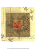 Maple Art by Tandi Venter