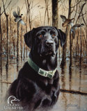 Canards - grand retriever Plaque en métal
