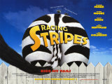 Racing Stripes Print