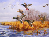 Ducks Unlimited As Good As Home Emaille bord