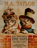 Hats 2 kittens Placa de lata