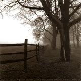 Harold Silverman - Rohový plot Plakát