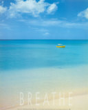 Blue Seas of Barbados Prints by Larry Ulrich