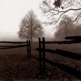 Zaun im Nebel Poster von Harold Silverman