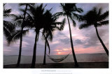 Coconut Palms Prints by Larry Ulrich