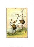 Oriental Cranes I Prints