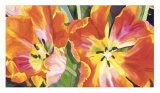 Two Parrot Tulips Giclee Print by Leslie Gerstman
