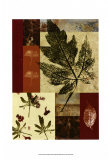 Leaf Print Collage III Posters