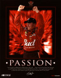 Dale Earnhardt Jr. - Passion Affiches