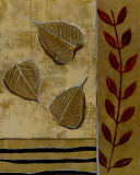 Sage Leaves Prints by Richard Ivy