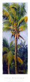 Coconut Palm Posters by Lois Brezinski