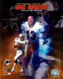 Dan Marino - Hall of Fame Composite Photo