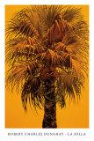 La Jolla Prints by Robert Charles Dunahay