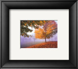 Autumn Mist Prints by Mike Jones