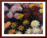 Chrysanthemum, 1897 Prints by Claude Monet