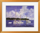 Moored Cat Boats Print by Ray Ellis