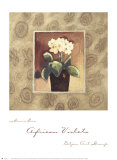 African Violets Prints by Maria Eva