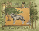 Gray Wolf Prints by Anita Phillips