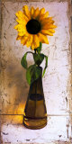 Sunflower in an Amber Vase Prints by Tania Darashkevich