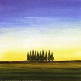 Green Trees II Prints by Joel Harris