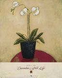 Cinnabar Still Life I Posters by Maria Eva