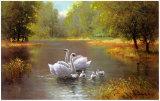 Cisnes Láminas por Max Weber