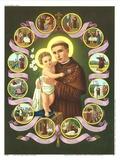 Hl. Antonius von Padua Posters
