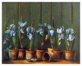 Iris Bleus Prints by Fabrice De Villeneuve