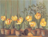 Tulipes Jaunes Prints by Fabrice De Villeneuve