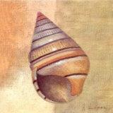 Small Snail Print by A. Lopez
