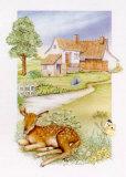 Spring, Deer Prints