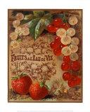 Eaux de Vie de Fruits II Láminas