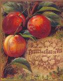 Eaux de Vie de Fruits I Print