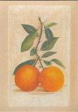 2 Oranges Posters par Laurence David