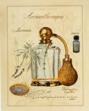 Aromatherapie, Lavande Art by Laurence David