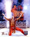 Shawn Michaels 170 Photo