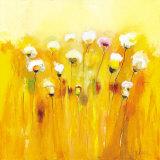 Summerfields I Lámina por Anne L. Strunk